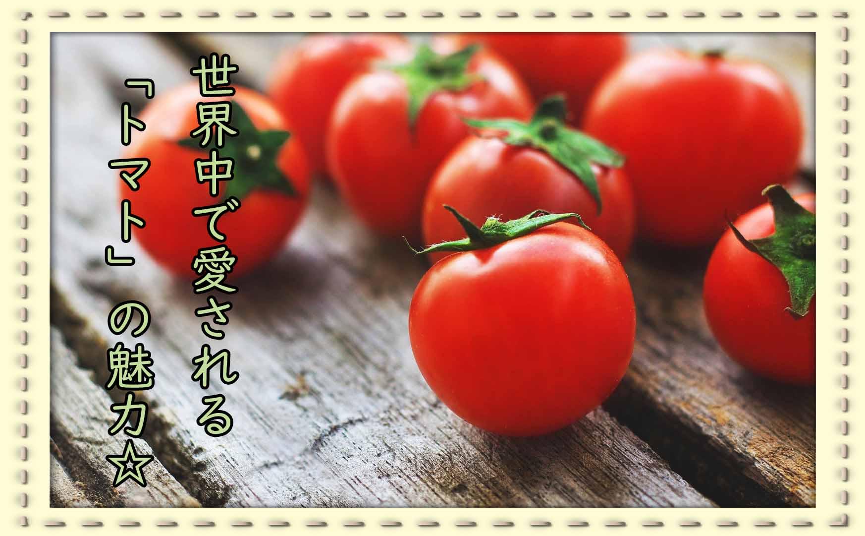 いまではすっかり人気者?トマトの魅力