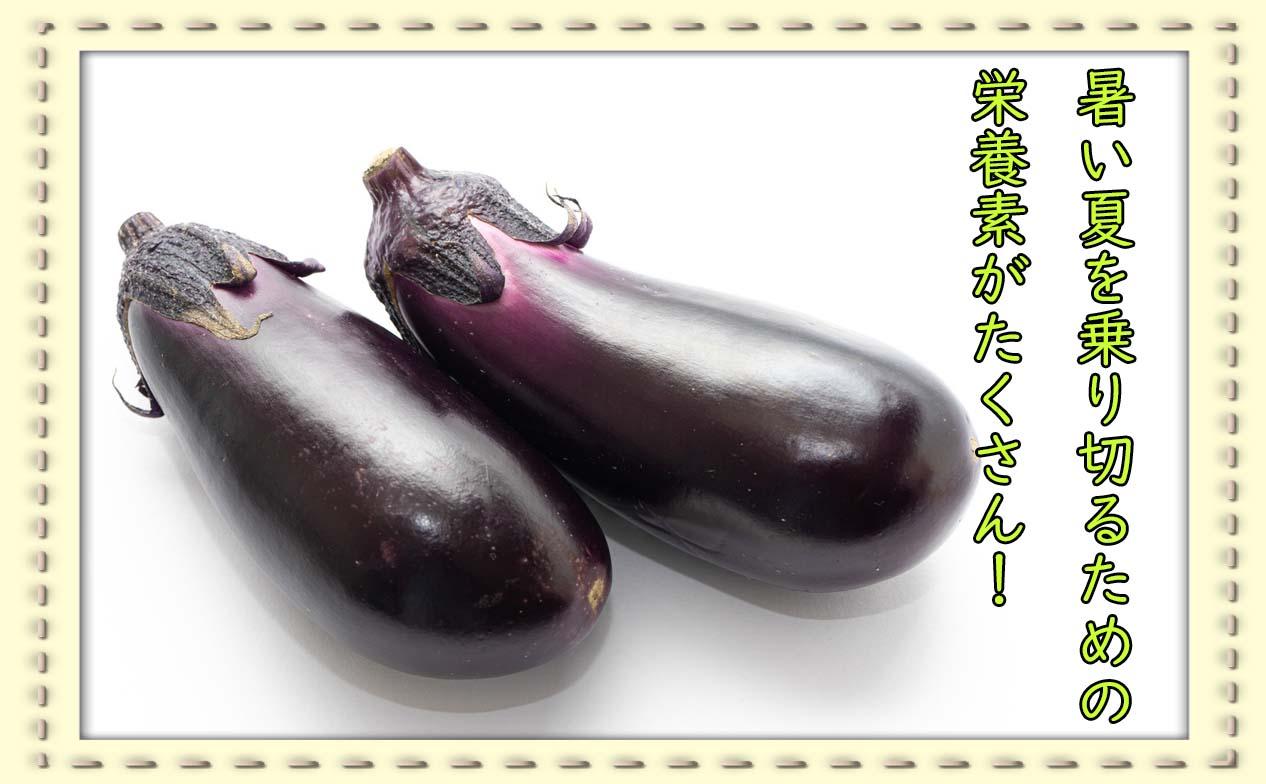 鮮やかな青紫色が特徴!夏野菜「なす」を食べよう
